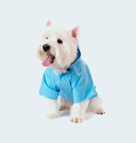 UrbanPup Duck Egg Blue Raincoat
