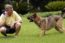 Camp Bow Vow Dog Tra...