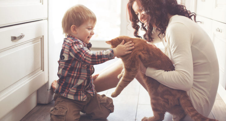 EHS Day Camp: Feline Fanatics